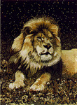 United Weavers Safari 030 73170 Majestic Lion Closeout Area Rug