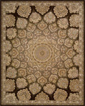 Nourison 2000 Collection 2318 BRN Brown Area Rug