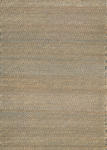 Couristan Ambary 4959/0264 Tansy Natural-Smoke Area Rug