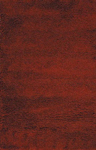 Nourison Coral Reef CR01 RUS Rust Closeout Area Rug