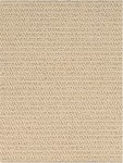 SIERR 53520 Champagne - Sierra Collection - Nourison offers an extraordinary selection of premium broadloom, roll runners, and custom rugs.