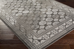 Surya Nova NVA-3029 Light Grey/Charcoal/Charcoal/Ivory Area Rug