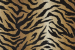 WILDLIFE BENGAL WLD03 NATURAL-B - Nourison offers an extraordinary selection of premium broadloom, roll runners, and custom rugs.