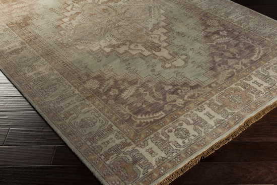Surya Zeus Zeu 7813 Sea Foam Beige Chocolate Area Rug