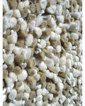 Rug Market Frisco 01119 Bergamo Beige/Off White Closeout Area Rug