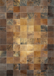 Couristan Chalet 0348/1579 Tile Brown Area Rug