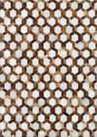 Couristan Chalet 0492/9307 Spectrum Ivory-Brown Area Rug