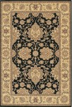 Couristan Chanterelle 1720/0004 Antique Ispaghan Black Closeout Area Rug