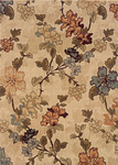 Oriental Weavers Palermo 2854F Closeout Area Rug