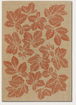 Couristan Five Seasons 3079/0011 Rio Mar Cream/Terra-Cotta Closeout Area Rug - Spring 2011