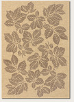 Couristan Five Seasons 3079/0012 Rio Mar Cream/Brown Closeout Area Rug - Spring 2011