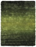 Feizy Indochine 4551F GRN Green Closeout Area Rug