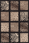 United Weavers Shelby 660 05370 Rio Black Closeout Area Rug