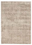 Feizy Cannes 3694F Light Gray/Brown Area Rug