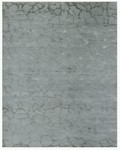 Feizy Congo 7155F Grey Pond Closeout Area Rug