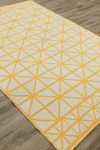 Jaipur Graphic GBP03 Framework Birch & Old Gold Closeout Area Rug