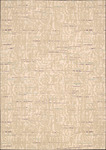 Nourison Nepal NEP11 SAN Sand Closeout Area Rug