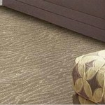 Nourison Stardust Collection - Nourison offers an extraordinary selection of premium broadloom, roll runners, and custom rugs.