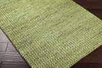 Designer Series DS040043 Lime Earth Tones Braided Closeout Rug