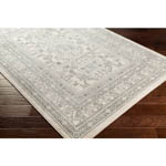 Surya Chester CHE-2328 Area Rug