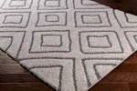 Surya Cut & Loop Shag CLG-2309 Area Rug