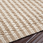Surya Country Living Country Jutes CTJ-2004 Cream/Natural Closeout Area Rug - Spring 2013