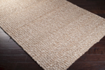 Surya Country Living Country Jutes CTJ-2029 Tan/Praline/Winter White Closeout Area Rug - Fall 2014