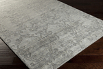 Surya Etching ETC-4923 Grey Closeout Area Rug - Fall 2014