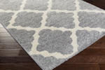 Surya Swift SWT-4016 Light Grey/Ivory Closeout Area Rug