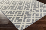 Surya Swift SWT-4021 Light Grey/Ivory Closeout Area Rug