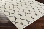 Surya Swift SWT-4023 Ivory/Black Closeout Area Rug