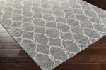 Surya Swift SWT-4024 Light Grey/Ivory Closeout Area Rug