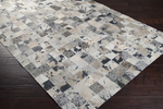 Surya Trail TRL-1124 Safari Tan/Desert Sand/Brindle Closeout Area Rug - Fall 2014