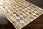 Surya Trail TRL-1134 Beige/Gold/Tan/Mocha Closeout Area Rug