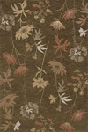 Momeni Transition TS-001 Brown Closeout Area Rug