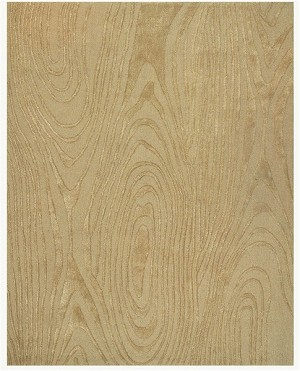 Feizy Iota 8042F Natural Closeout Area Rug