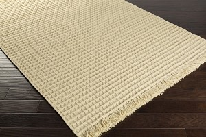 Surya Papilio Amber ABR-6001 Closeout Area Rug - Spring 2015